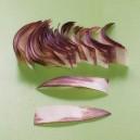 Paski klinowe brązowe 014 - 50szt - większe