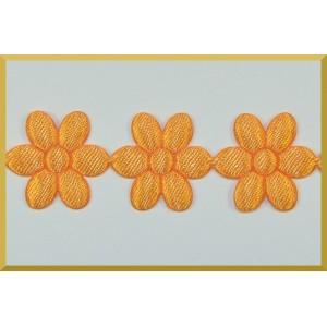 Stokrotki jasno pomarańczowe