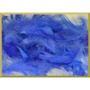 Piórka niebieskie