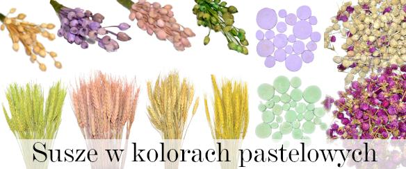susz pastelowy, zboże, plastry, konieczna, jagody